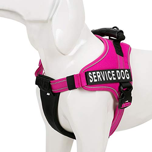 Chai's Choice Service Dog Vest