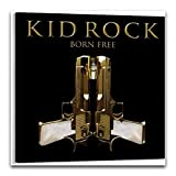 Kid Rock Poster, dekoratives Gemälde, Leinwand, Wandkunst,