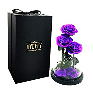Silk Flower Arrangements OYEFLY Beauty and The Beast Rose, The Newly Designed Gift Box Rose in a Glass Dome Light Wooden Base for Wedding, Valentine's Day, Christmas, Mothers Day Decorations Romantic Rose for Women (Red)