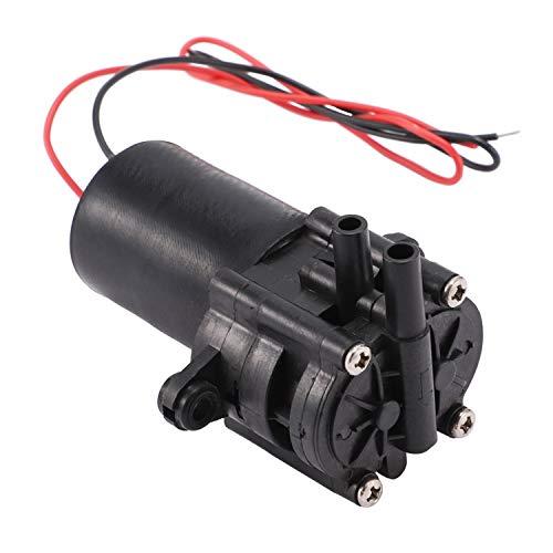 SNOWINSPRING A210 12V Wasser Pumpe Hocheffiziente Selbstansaugende DC Zahnrad Pumpe Aus Kunststoff