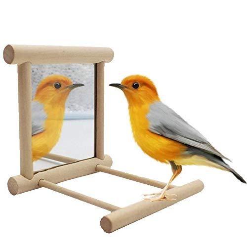 PIVBY Bird Mirrors Lovebird Toys Perches for Bird cages Interactive Hanging Play Toy for Parrot Macaw African Greys Budgies Cockatoo Parakeet Cockatiels Conure Lovebird
