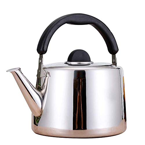 DINNA Whistle Stainless Steel Pour Over Coffee Drip Kettle Pot, Surgical Stainless Steel Teapot for All Stovetops, Silicone Handle, Mirror Finish,5L