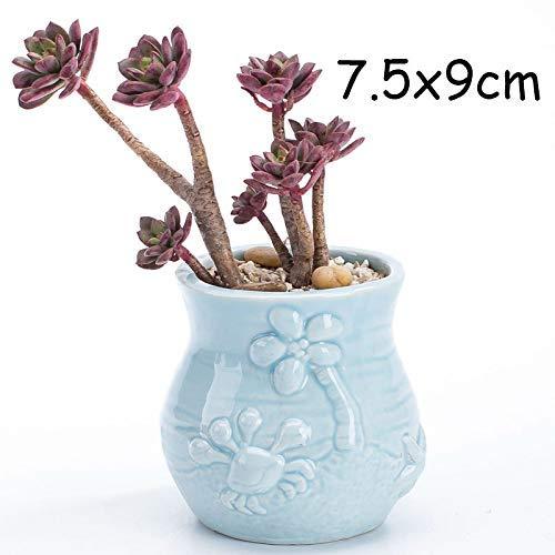 WOHAO Panier de Fleurs Suspendus Pots de Fleurs Mignon charnue Flowerpot pocelain Blue Fish Vase Fleur Jardin Mini Bonsai Cactus Flower Pot for Home Décor (Couleur: 8) (Color : 3)