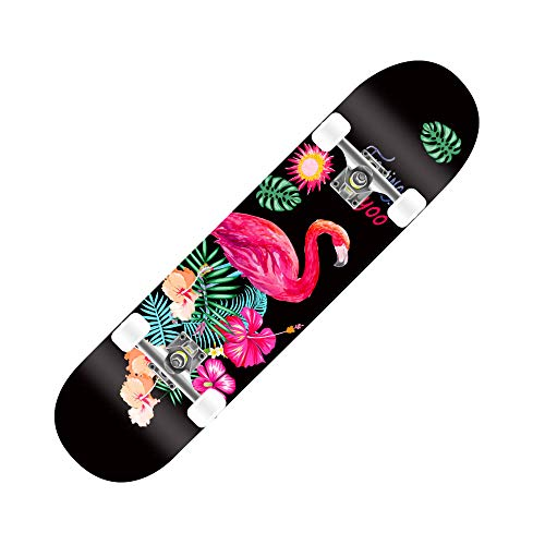 COCKE Skateboard Komplett Board,79X20cm Holzboard ABEC-7 Kugellager 31 Zoll 8-Lagigem Ahornholz, 85A Rollen Für Anfänger Kinder Jugendliche Und Erwachsene,b