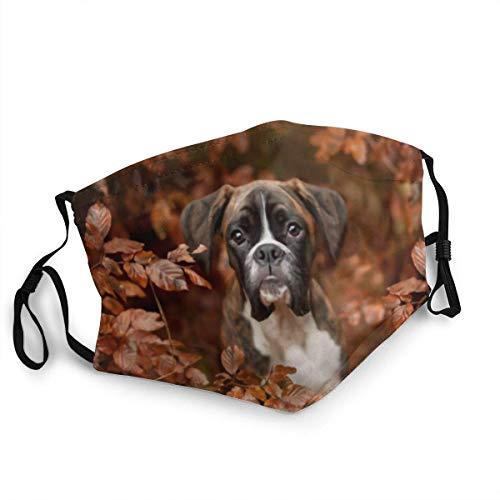 Hirola Boxer Dogs - Mascarilla de otoño a prueba de polvo, resistente al viento, reutilizable, lavable, cubierta para el polvo, hombres y mujeres