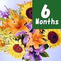 【フラワーファーム】 フラワーファームお誕生花-6ヶ月定期便- 【花 ギフト・宅配・誕生日・プレゼント・翌日】