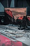 Understanding Synthesizer: How All Synthesizers Work: Minor Scales Music Theory (English Edition)