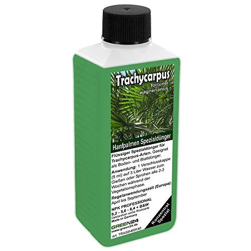 GREEN24 Trachycarpus Dünger für Hanfpalmen Tessinerpalmen Trachycarpus fortunei wagnerianus Palmen als Spezial Wurzeldünger + Blattdünger Profi Linie düngen