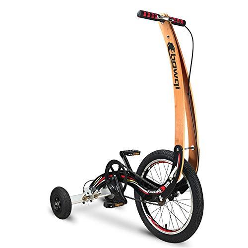 2020 New Folding hometrainer, mini stand paardrijden fiets zonder zetel, gewicht te verliezen fiets, draagbare 20inch sportieve fiets, fitness driewieler voor unisex.