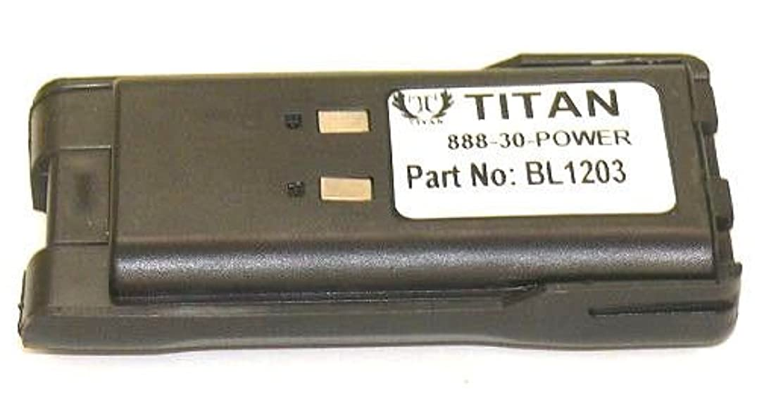 Titan HYT TC600 2-Way Radio Battery (Li-Ion 7.2V 1300mAh) Rechargeable Battery