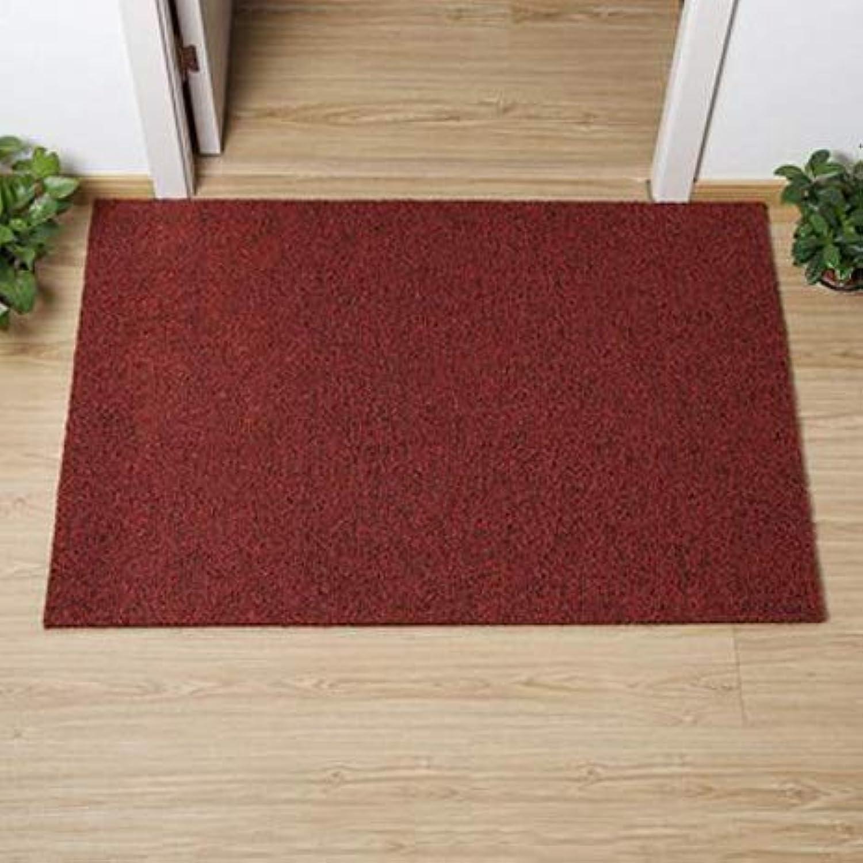 Non-Slip Door Mat, Carpet Front Door Carpet for Doorway Stairs Insole Balcony Front Door-red Wine 60x120cm(24x47inch)