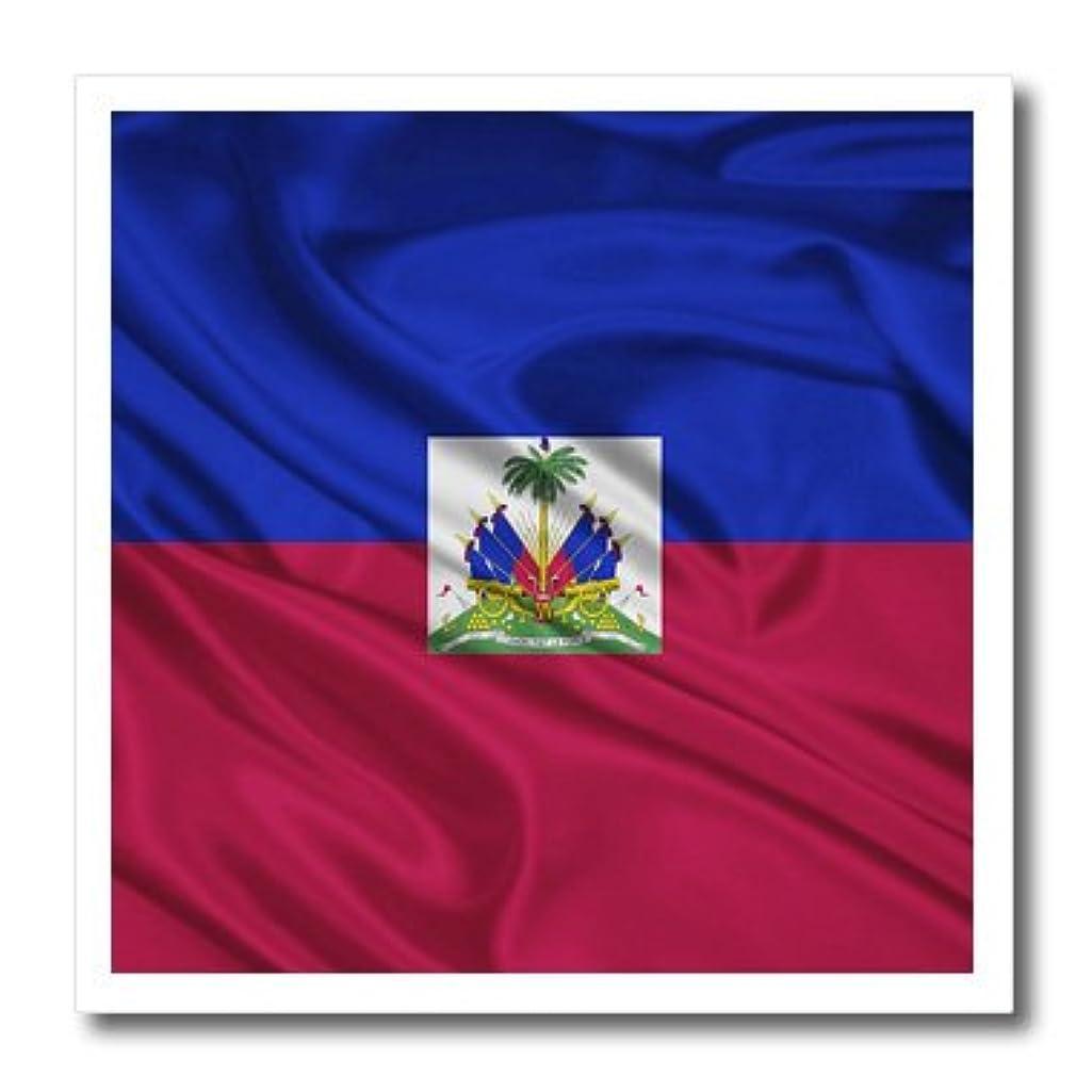 3dRose Haiti Flag-Iron On Heat Transfer, 10-inch, for White Material (ht_28251_3)