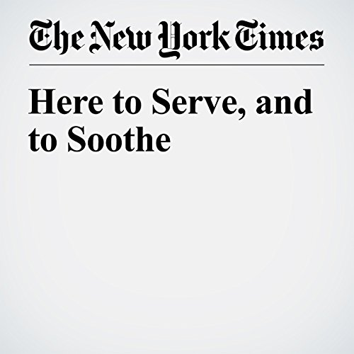 Here to Serve, and to Soothe audiobook cover art