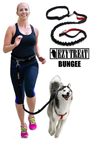 Strong Bungee Dog Lead Stretchy Elastic - No Pull Anti Shock Leash with Waist Belt for Running and Dog Walking - GO Hands Free