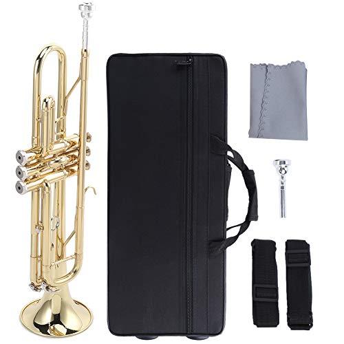 B-Trompete,Trompete Bb Flatsons Trompete Messingrohr Bb Key für Anfänger Anfänger üben Musikinstrument