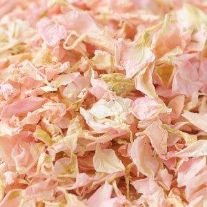 Natural Biodegradable Delphinium Wedding Confetti - 26 Colours Available (Pale Pink, 1 Litre)
