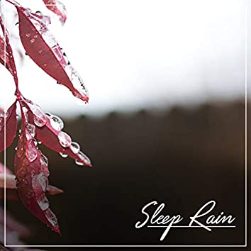 Rain Sounds for Meditation: Sleep Rain Compilation, Insomnia, Trouble Sleeping, Yoga, Focus, Study, Zen and Calming Rain