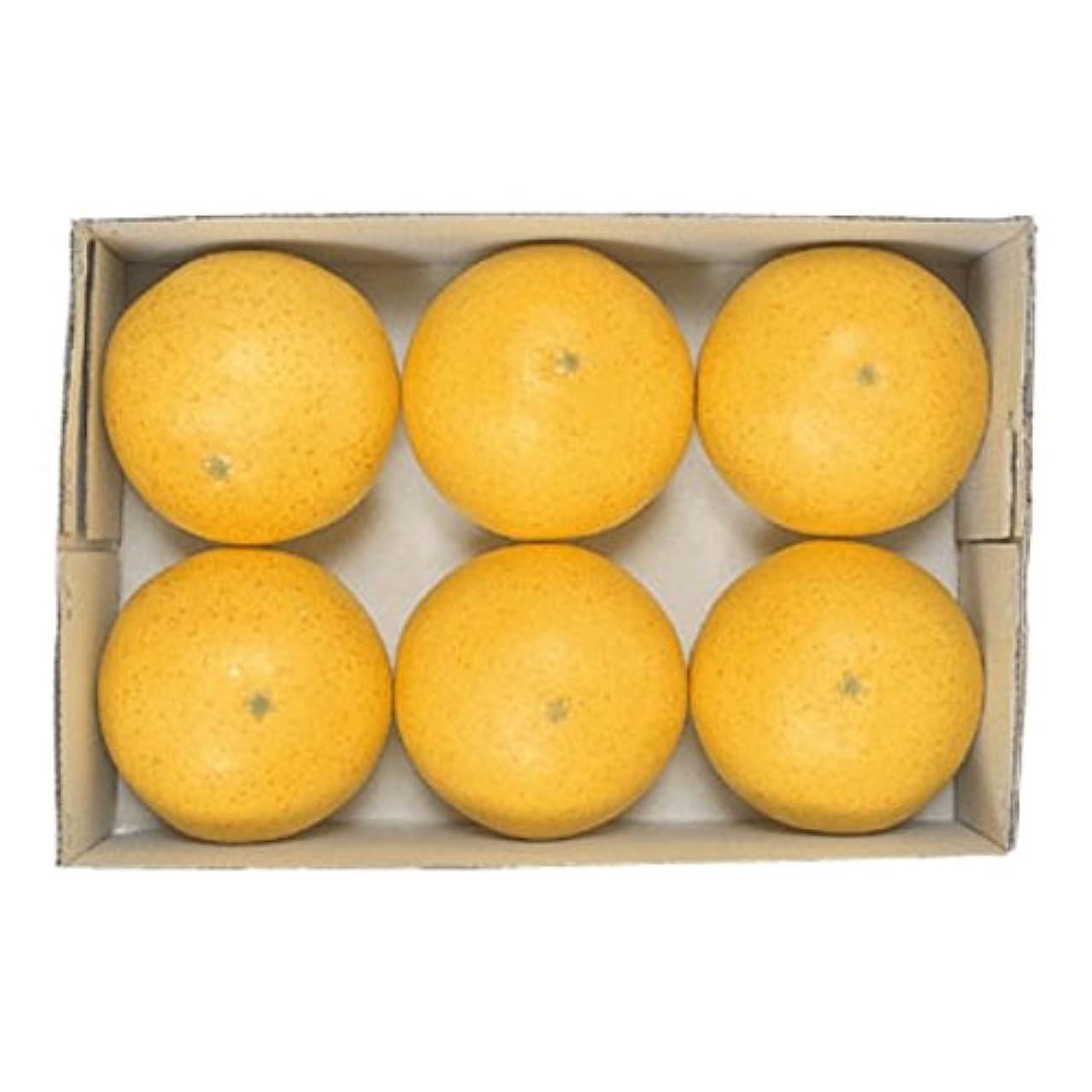 威する発生器時計フロリダグレープフルーツ(6ヶパック)(VF0144)[食品サンプル フェイクフード ディスプレイ フルーツ グレープフルーツ]