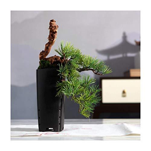 Lsqdwy Árbol de bonsái Artificial Bonsái de Pino Negro japonés Artificial Decoración de Escritorio Planta Verde Falsa en Maceta Maceta de cerámica Negra para Interior Decoración de Escritorio de of