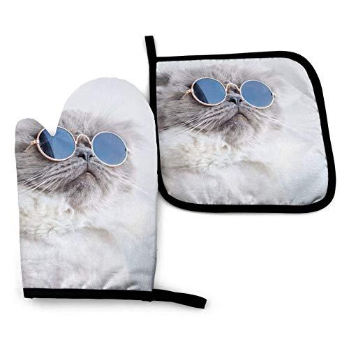 AEMAPE Divertido Gato posando con Gafas de Sol, Guantes para Horno y Soporte para ollas, Soportes para ollas Resistentes al Calor, Guantes para Horno para cocinar, Hornear, Asar a la Parrilla