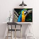 Leinwand Bild,Niedliche Tier Papagei, Poster Und Drucke