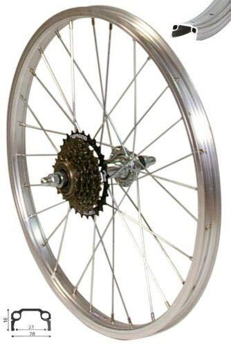 Redondo 20 Zoll Hinterrad Laufrad Kasten Felge Silber + 6 Fach Shimano Kranz