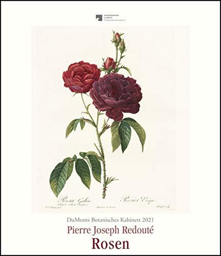 DuMonts Botanisches Kabinett – Rosen von P.J. Redouté – Kunstkalender 2021 – Wandkalender im Hochformat 34,5 x 40 cm