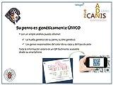 Canis-ADN-Capas Test genético para Perros