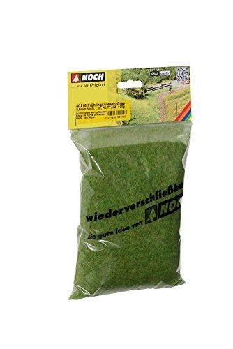 Noch Ziterdes 50210 - Streugras, Frühlingswiese100 g