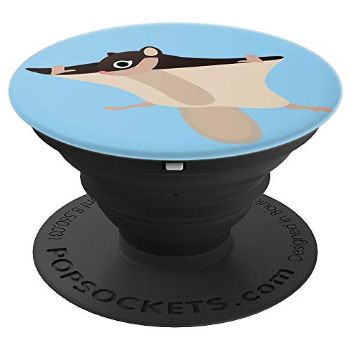Flying Squirrel Costume Funny Squirrels Halloween Graphic PopSockets Grip and Stand for Phones and Tablets