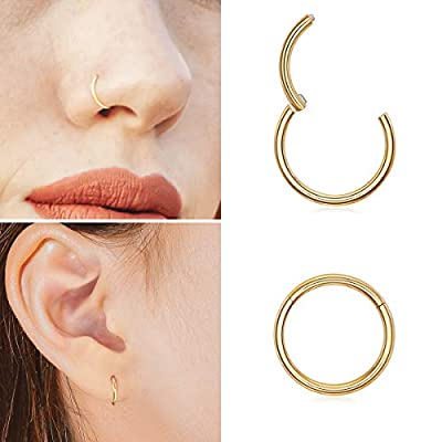 Ldurian 316L Surgical Stainless Steel Hypoallergenic Hinged Nose Ring Hoop 18/20 Gauge, Diameter 6mm, 7mm, 8mm, 9mm with Silver/Gold/Rose Gold Nose Piercing Jewelry Hoop for Women/Men with Retainer