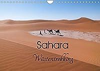 Sahara Wuestentrekking (Wandkalender 2022 DIN A4 quer): Die Sahara im Sueden von Marokko, zu Fuss durchquert, hinterlaesst einen unvergesslichen Eindruck (Monatskalender, 14 Seiten )