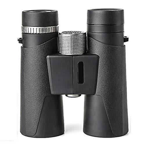 LIMUZI 10x42 Binocular, HD Roof Prism Profesional Prismáticos -BAK4 Prisma FMC Lente para observación de Aves, Deportes y Vida Silvestr ( Color : Silver )