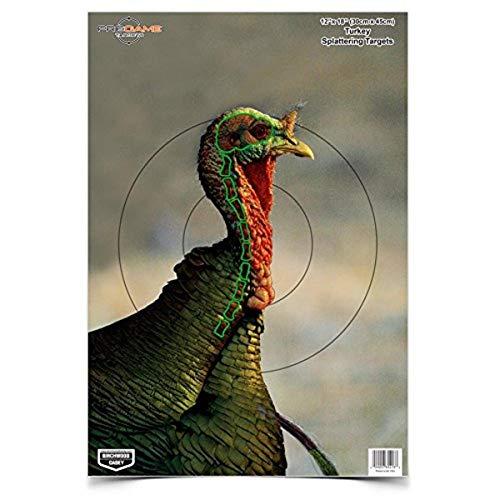 Birchwood Casey 35403 Shooting Target Pre Game Turkey Target 12 x 18, 8-Pack