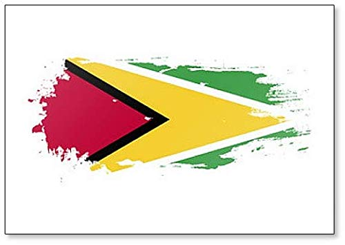 Guyana Flag Grunge Brush Style Illustration Fridge Magnet