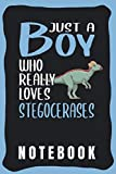 Notebook: Cute Stegoceras Notebook for Notebooking - Funny Stegoceras Quote: Just A Boy Who Really Loves Stegocerases - Small Notebook Wide Ruled - Stegoceras gift for Boys and Men.
