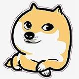 Iseebiz Comedero Automtico Gatos/Perros Dispensador Comida para Mascotas con Recordatorio por Voz y Temporizador Programable, Pantalla LCD,3 Litro