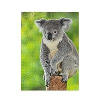 500ピース ジグソーパズル コアラ 木の上 写真 パズル 木製パズル 動物 風景 絵 ピクチュアパズル Puzzle 52.2x38.5cm