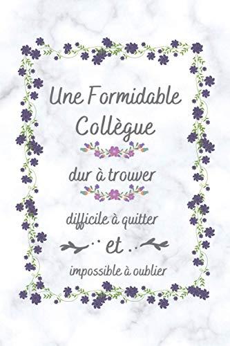 Une Formidable Collègue: Petit Journal Intime de Poche , Cadeau collègue bureau ( Secrétaire , Comptable , enseignante )