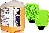 DELLWING 2 x Waschhandschuh Rasta Green + 10L Autoshampoo Wash & Wax