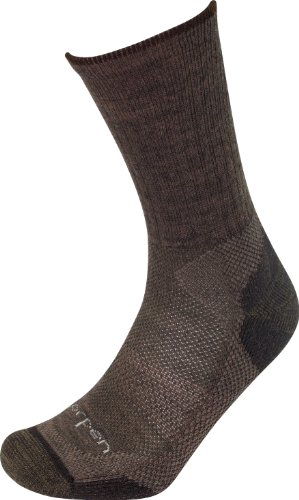Lorpen T2W Merino Light Hiker-Two Pack Sock (Earth, Medium)