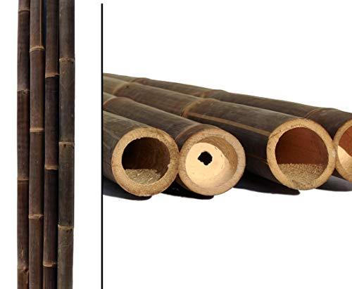 1 Stück Bambusstange Wulung schwarz braun 300cm mit Durch. 8 bis 10cm von Bambus-Discount - Bambus Rohr