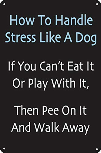 How To Handle Stress Like A Dog 12