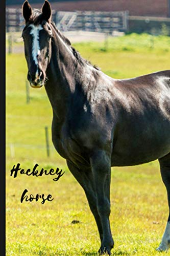Hackney horse: Journal and Notebook - Composition Size (6'x9') With 120 Lined Pages, Perfect for Journal, Doodling, Sketching and Notes