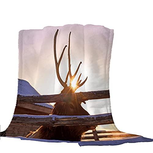Kuscheldecke Beigebrauner Yak Fleece Decke Weiche Flauschige Plüschdecke Flanelldecke 100x130cm Schlafdecke Bettwäsche Wohnzimmer Sofadecke Leicht zu pflegen Warm