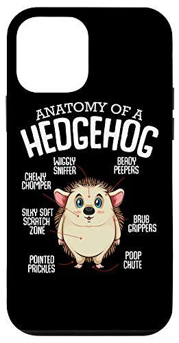iPhone 12 mini Cute Woodland Animal Anatomy Of Hedgehog Pet Lover Gift Idea Case