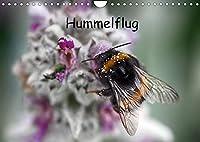 Hummelflug (Wandkalender 2022 DIN A4 quer): Hummeln sind faszinierend. Ueberzeugen Sie sich selbst von ihrer Schoenheit. (Monatskalender, 14 Seiten )