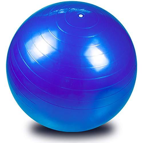 Wj Pelota de Ejercicio Pelota de Yoga Pelota de gimna Bola de Estabilidad de Ejercicio, Silla de Bola de Yoga Resistente A Golpes Extra Gruesa Anti-explosión con Bomba, Admite 1000 LB - 65/75/85cm