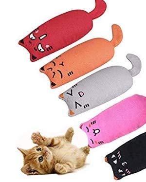 123 Life Katzenminze Spielzeug,Katzenspielzeug Set,5pcs Schmusekissen Mit Extra Viel...