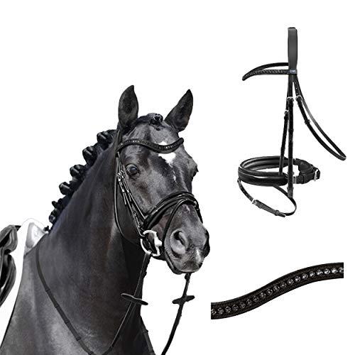Passier Trense Trensenzaum Apollo schwarz lack Reithalfter Spezial mit Zügel, Größe Pferd:Warmblut